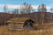 autumn, barn, buildings, Herjedalen, season, seasons, timber barn, torvtak