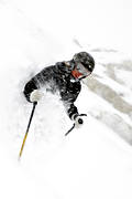 deep snow, down-hill running, fresh snow, loose snow, offpist, powder, ski, ski, ski fun, skier, skies, skiing, snow, sport, winter