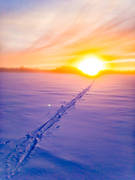 Jamtland, landscapes, skiing tracks, snow, sunset, tavla, winter