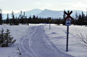 communication, motor sports, Satsfjallet, snowmobile, snowmobile, snowmobile trails, track, track cross, winter, äventyr