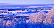Froson, Jamtland, landscapes, season, seasons, view, winter