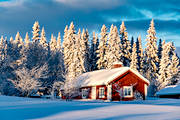 ambience, ambience pictures, atmosphere, cabins, christmas ambience, cottage, heavy snow buildup, hem, house, Jamtland, longing, Löfsåsen, pines, season, seasons, snow, spruce forest, vinterro, vinterstuga, winter, winter forest, woodland